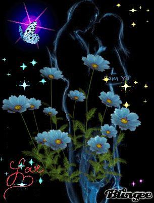 Едем гости, картинка ночь луна цветы бабочки анимация