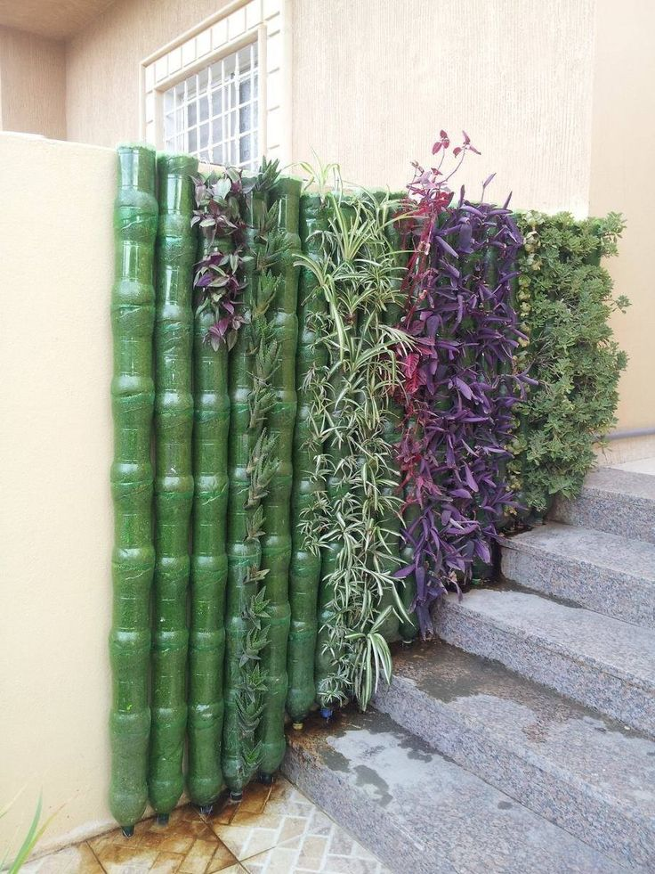 Green wall made from plastic bottles Vertical garden
