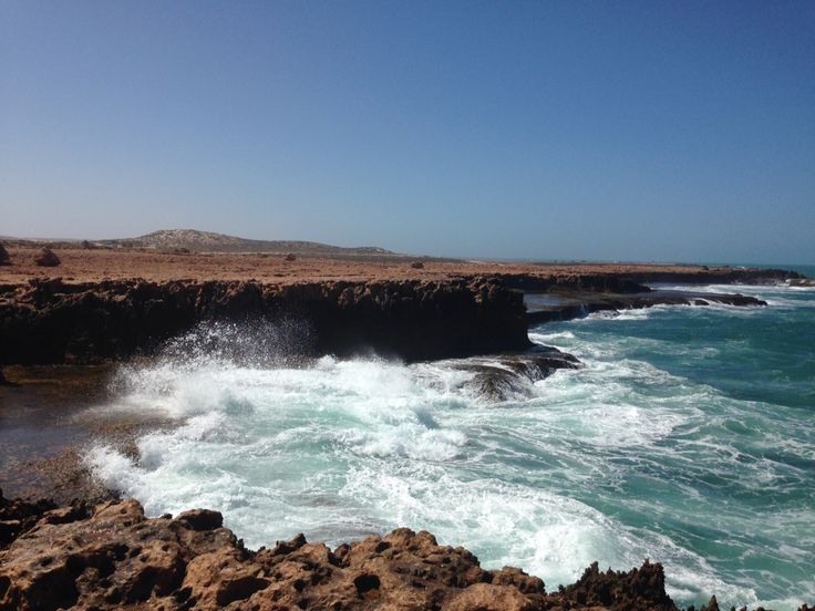 The blow holes