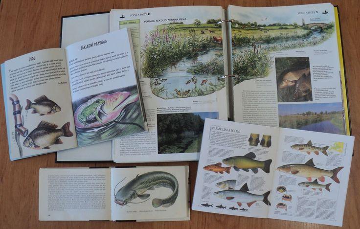 Rybníky a život v nich - encyklopedie, příručky