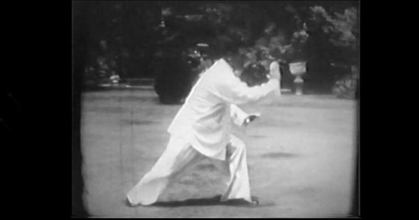 Classic Yang Style Tai Chi long form