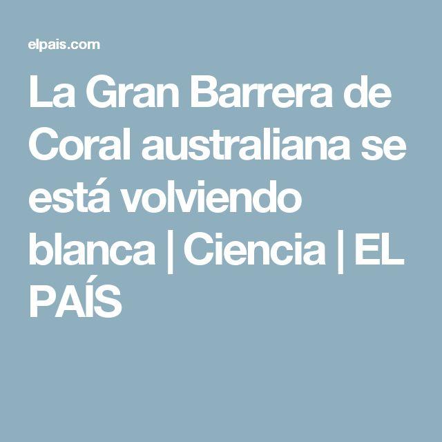 La Gran Barrera de Coral australiana se está volviendo blanca | Ciencia | EL PAÍS