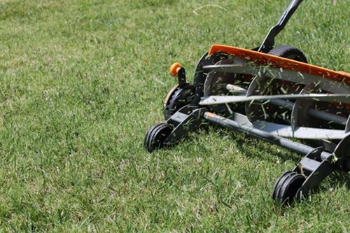 """Push reel mower :)    """"But in the meantime we've got it hard/ Second floor living without a yard"""""""