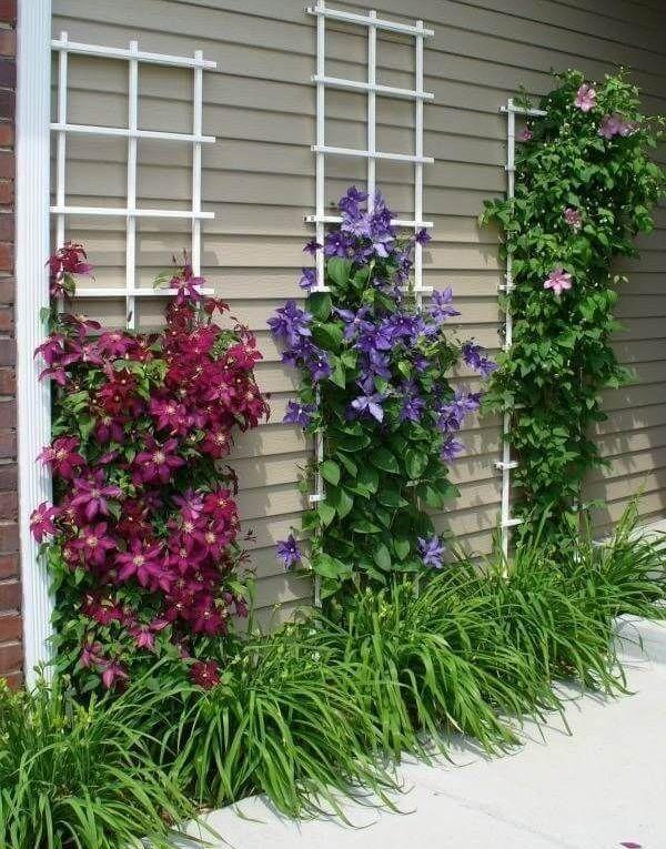 20 Idee Fai Da Te Paesaggistica Giardino Anteriore Idee E