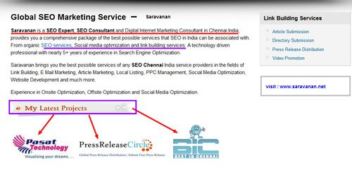 SEO Expert Chennai : Saravanan is a top SEO Expert in Chennai, SEO Consultant, Online Marketing Specialist, Adwords Expert, Search Engine Optimize(SEO) Specialist with proven record in SEO Services in Chennai India | saravanan1