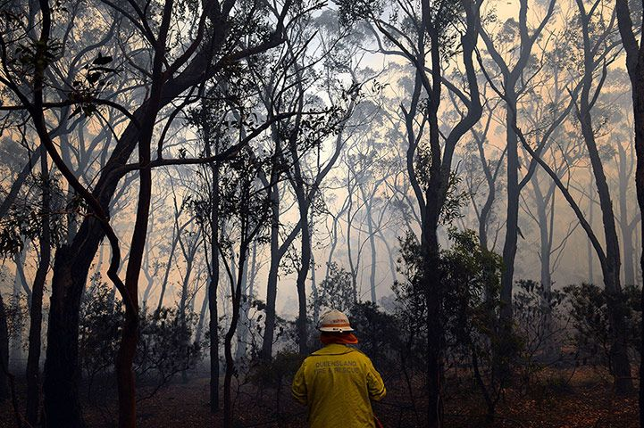 Credit: Saeed Khan/AFP Some of the week's best photojournalism came from the devastating bushfires in Australia.  Here, in this image by Saeed Khan, a firefighter looks out at heavy smoke rising from trees as his team prepares to battle approaching flames from a bushfire near Faulconbridge in the Blue Mountains, NSW