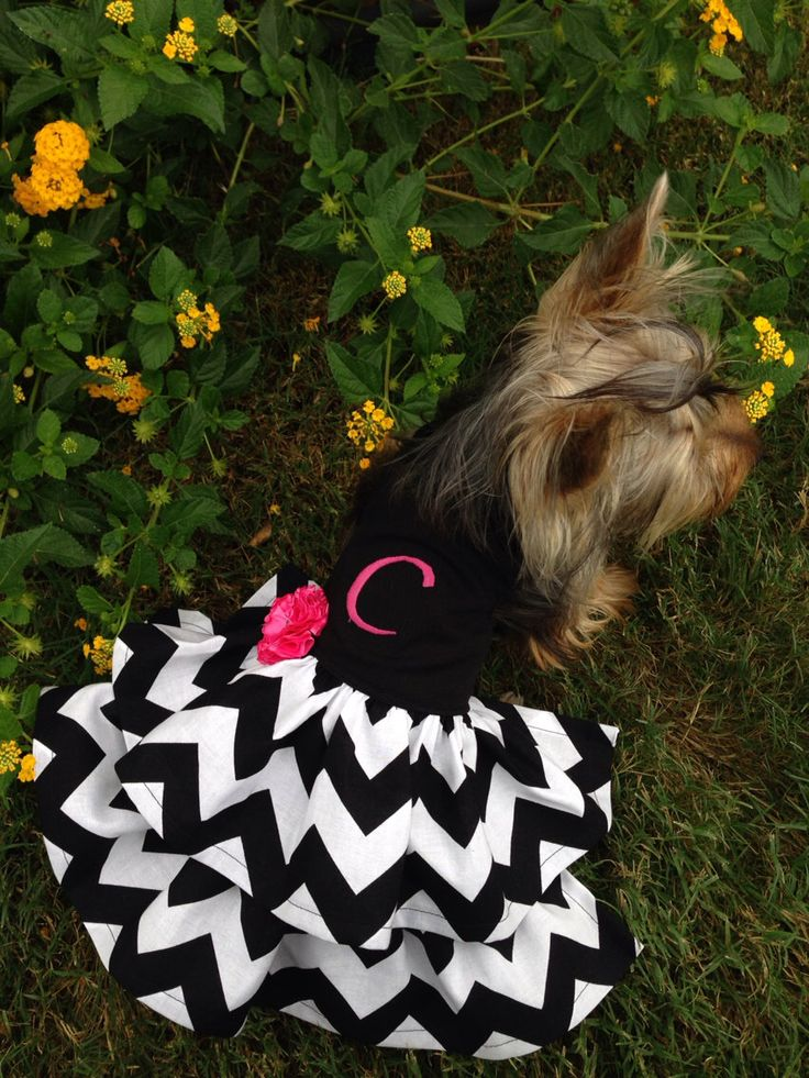 Custom monogrammed dog dress halter style • Black Chevron with pink Monogram and Flower(Etsy のRufflesforcharliより) https://www.etsy.com/jp/listing/165687645/custom-monogrammed-dog-dress-halter