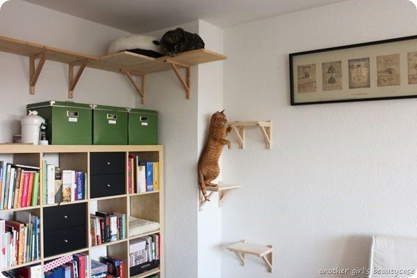 DIY Catwalk Katzentreppe Cat Furniture IKEA Hackers Katzenmöbel Regal (5 von 6)