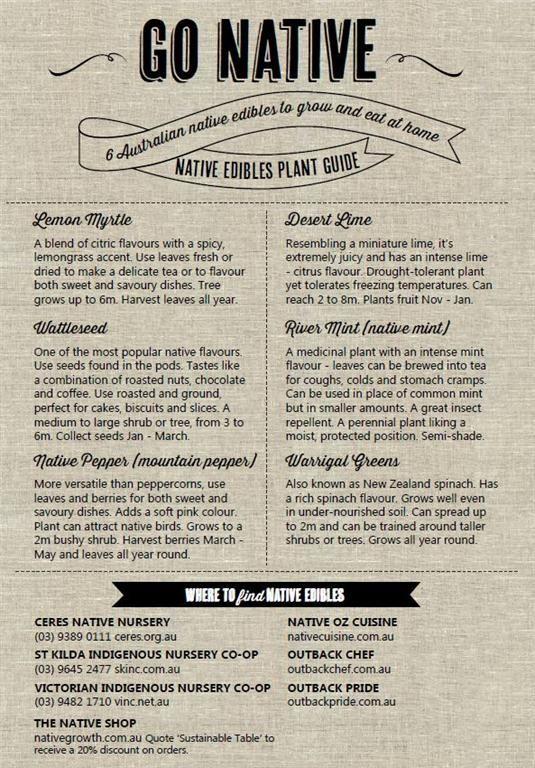Go Native: Australian Native Plant & Recipe Guide. #native #australianfood #local #sustainable #sustainability