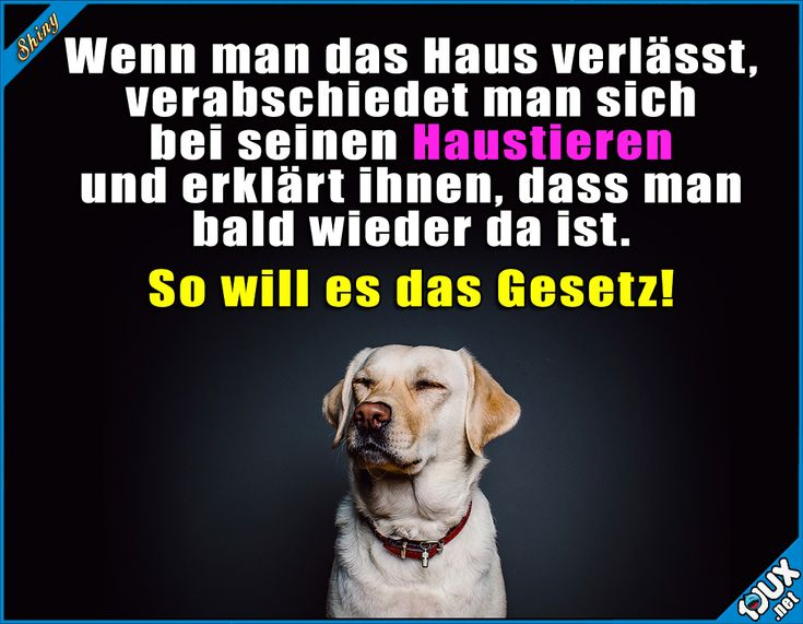 1186 best Katharina images on Pinterest | Einfach, Fuß abdruck und ...