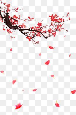PNG Images, Download 1,606,708 PNG Resources with Transparent Background