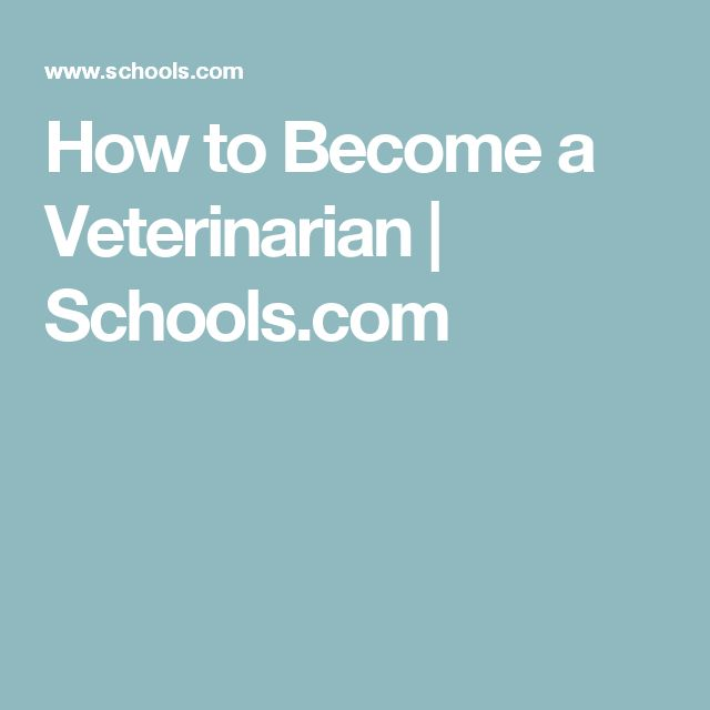 How to Become a Veterinarian | Schools.com