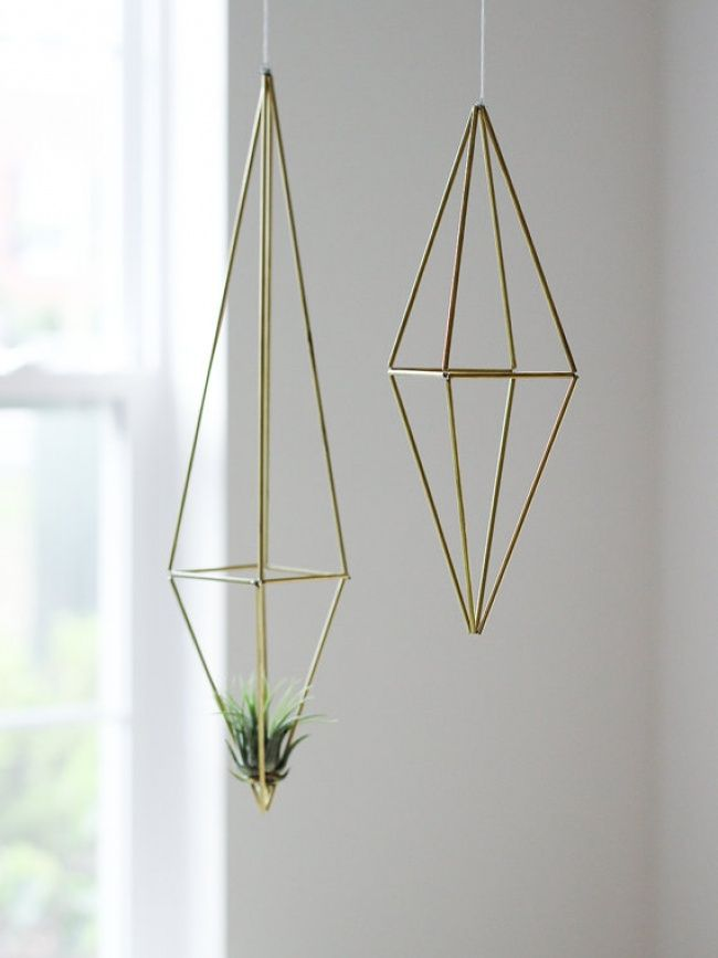 Tillandsia's zijn luchtplanten die geen potgrond of water nodig hebben. Leuk om op de wand tegenover de spiegel boven de schouw te hangen.