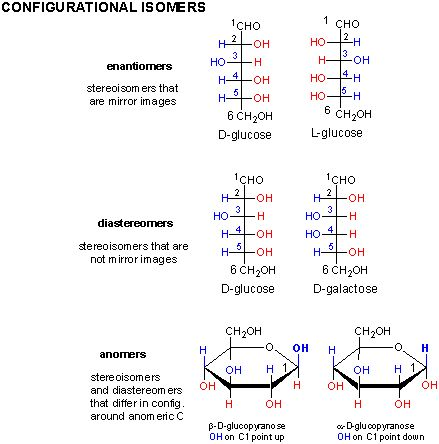 16 stereoisomers of d glucose and fructose relationship