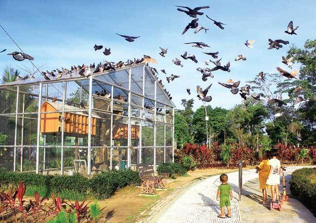 Indahnya Pesona Taman Tiga Generasi Balikpapan