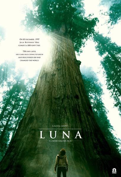 Luna The Redwood | Tree Sistren | Pinterest