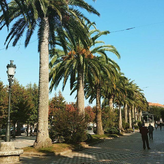 The Alameda in #Noia #Galicia