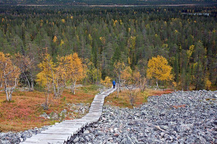 Ukko-Luosto Trek - Pyhä-Luosto National Park