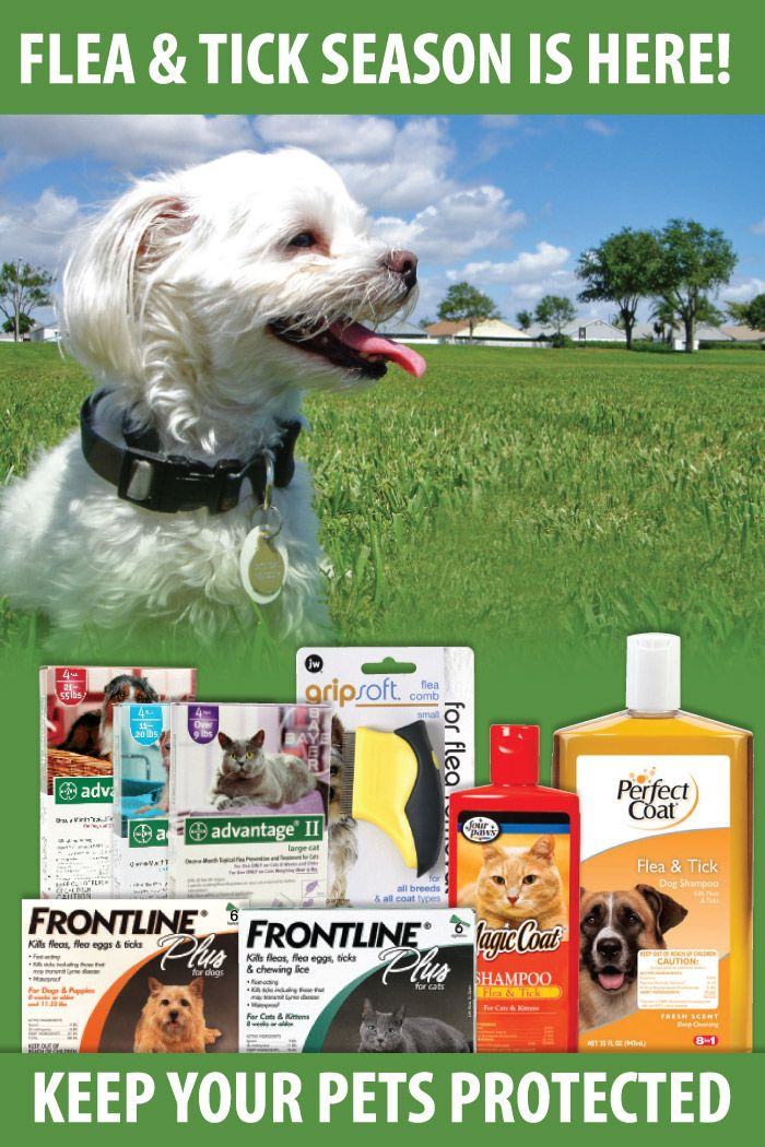 Flea & Tick Season is Here! Protect your pets now with Frontline, Advantage, Sentry, Bio Spot, No Bite and more.  Order topical flea and tick treatments, flea and tick shampoo, flea and tick carpet spray, flea and tick fogger, flea and tick spray and much more at http://thatpetplace.com?utm_content=buffer3fd4c&utm_medium=social&utm_source=pinterest.com&utm_campaign=buffer.