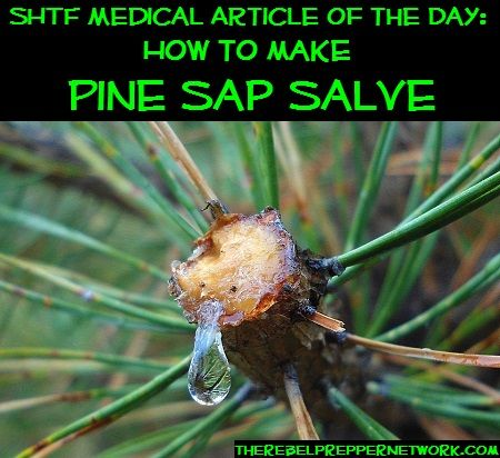 SHTF Medical Article of the Day: How to make Pine Sap Salve