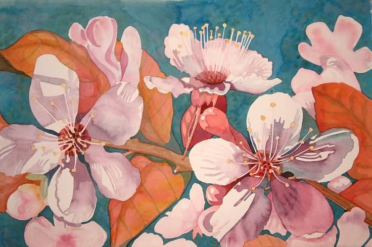 Plum Blossoms #2.   Cheryl Jenkins.   Watercolor
