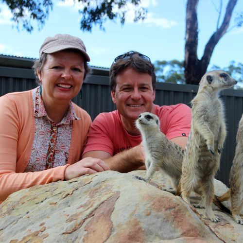 Hunter Valley Zoo - Encounters with a Meerkat at Hunter Valley Zoo