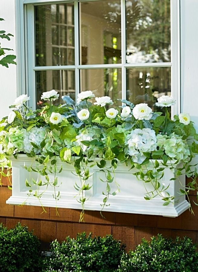 Ensure your Grandin Road window boxes are always overflowing with an abundance of gorgeous greens and beautiful blooms using our everlasting Spring Serenity Window Box Filler.