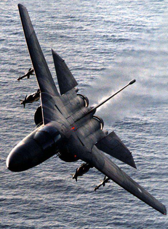 ♂ wings aircraft F-111 low level over water