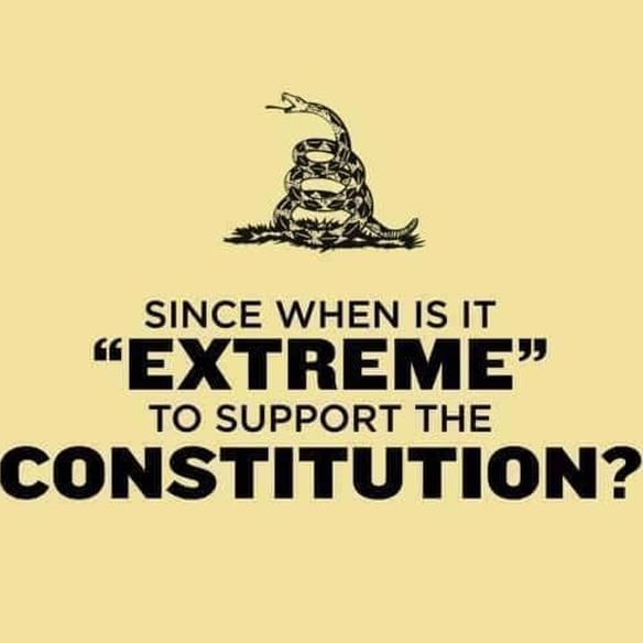 Depends on the purpose behind the support and the interpretation of the constitution.