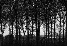 Landscape Photography  http://www.photographytouch.com