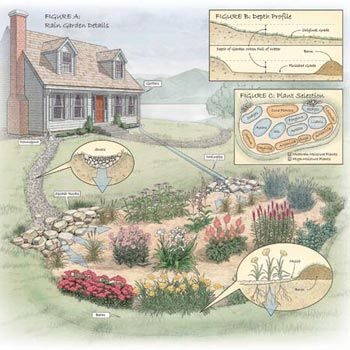 """""""rain"""" garden for the french drain spout"""
