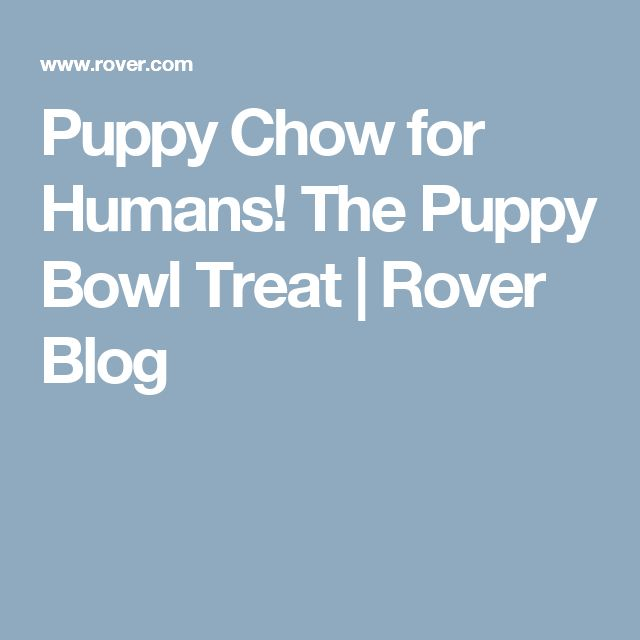 Puppy Chow for Humans! The Puppy Bowl Treat | Rover Blog