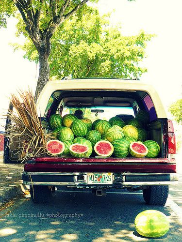Watermelons for sale...Right along the highway during the season.