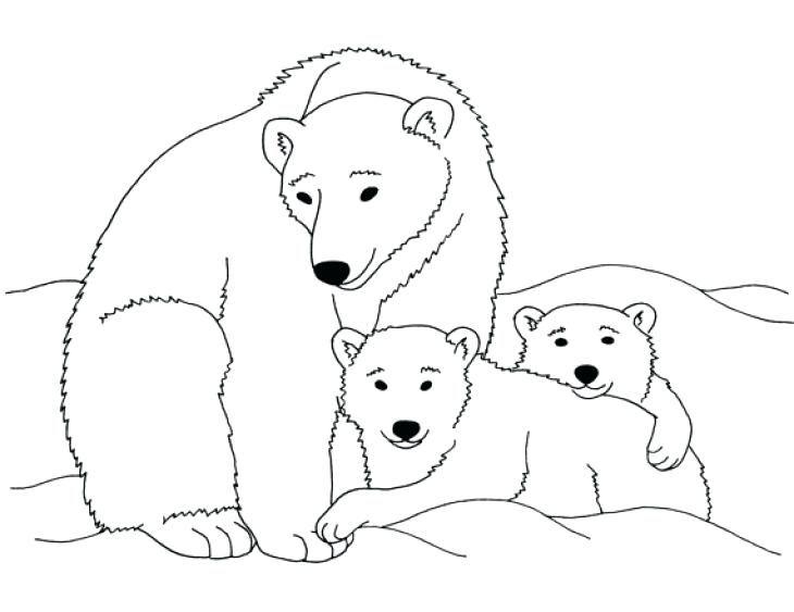 Polar Bear Siluetas Animales Dibujos Animales