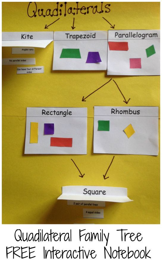 102 best images about Math Quadrilaterals & Triangles on ...