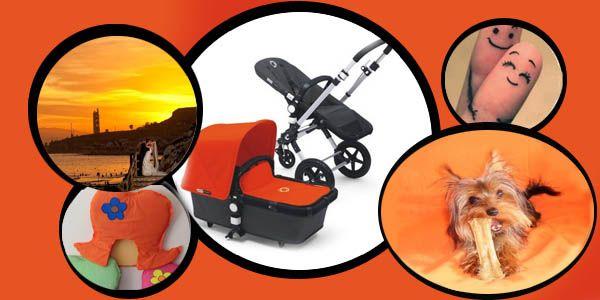 Mofli quiere el Bugaboo #naranja O eso nos cuenta Papi bloguero en su #Moodboard #Cameleon #quieroserembajador #atodocolor #bugabooespana @BugabooES @Madresfera