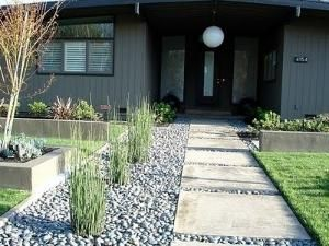 Yard Gravel Walkway Cacti Or Other Drought Resistant Plant On