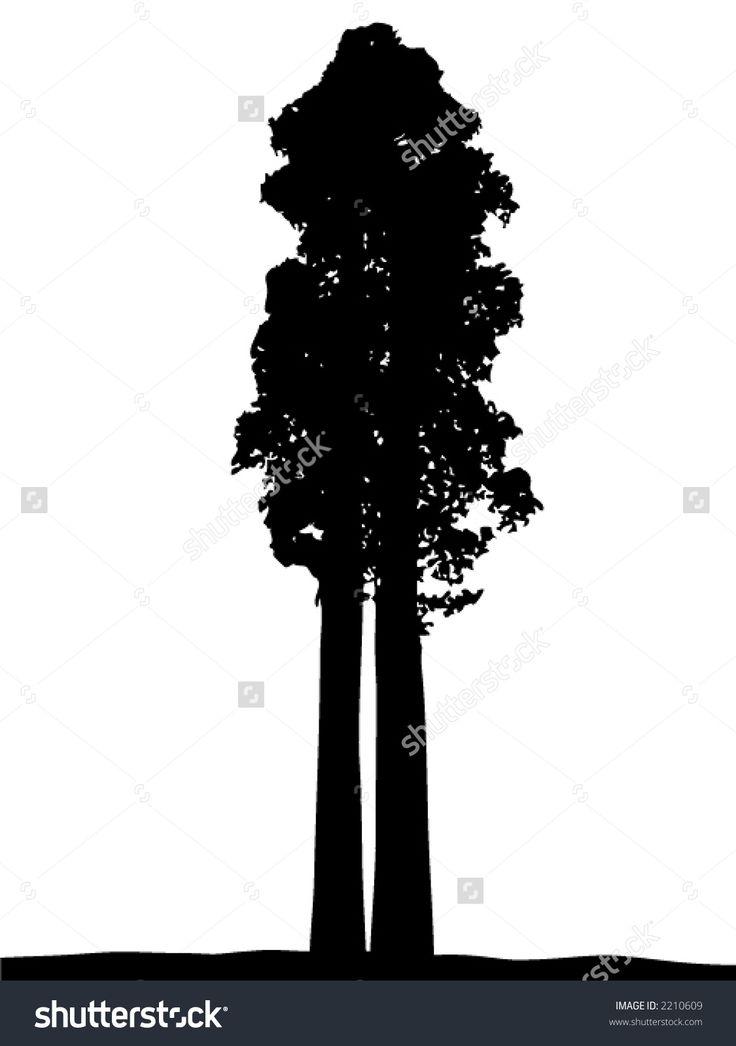 silhouette sequoia - Cerca con Google
