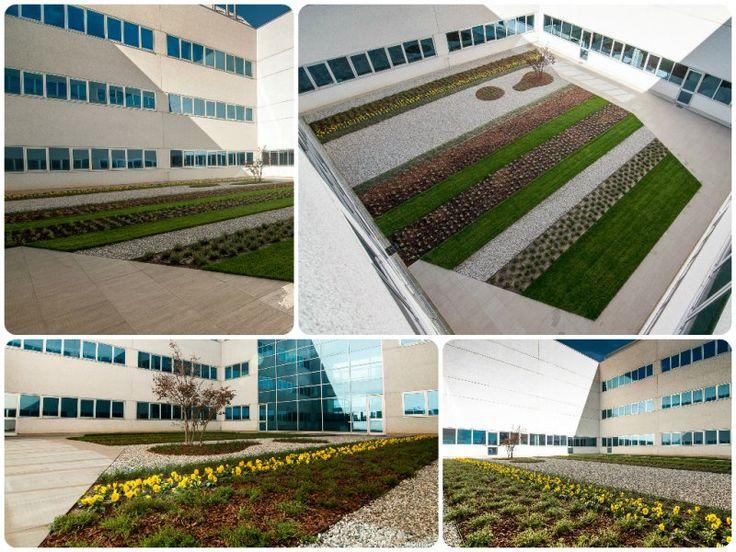 Progetto per giardino aziendale #gardenpink #agridea