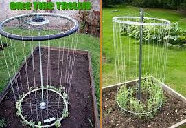 Image result for garden ideas