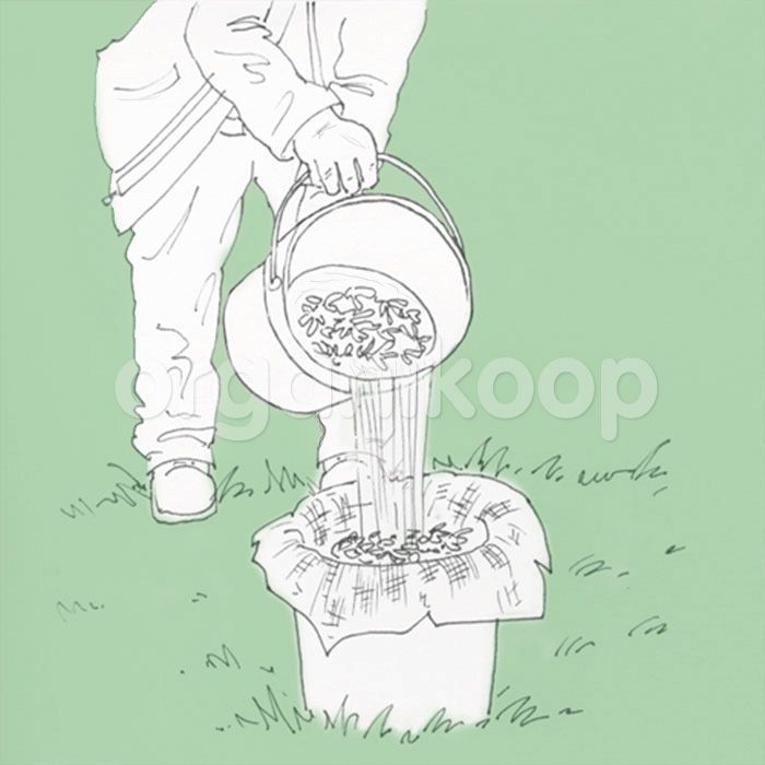 Natural Pesticides -  Bitki Koruma : Bitki Özütleri Tablosu