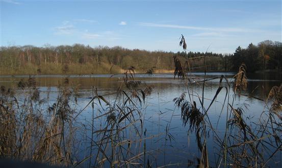 #Twente: Prachtige boerderijen, met houtwallen omzoomde akkers,  uitgestrekte bossen en hier het #Lonnekermeer.