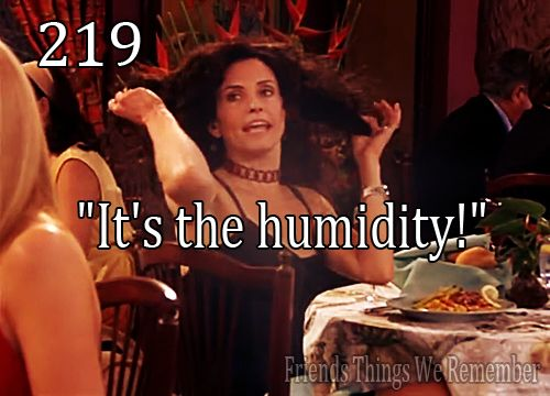 """It's the humidity!"" - Monica from friends on frizzy hair."