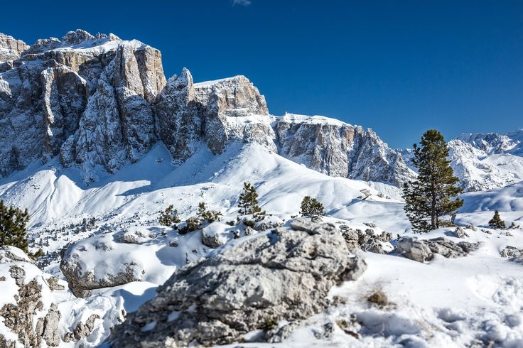 Confusing view - Photo taken on citta dei Sassi in the Dolomites Mountains. Lots of stones and some trees makes this photo a bit confusing