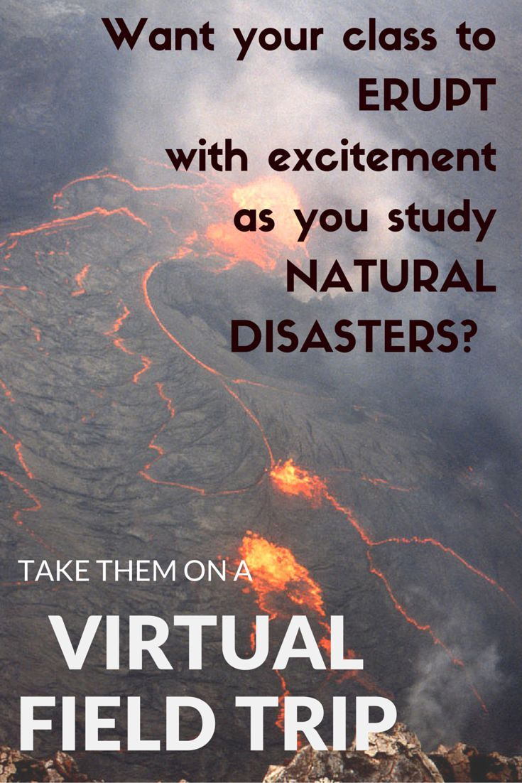Looking for a way for your students to visit a volcano?  To experience an earthquake?  To compare the different types of plate movement?  Take them on a virtual field trip in the comfort of your computer lab!  Check these printable, no prep activities at my TpT site!