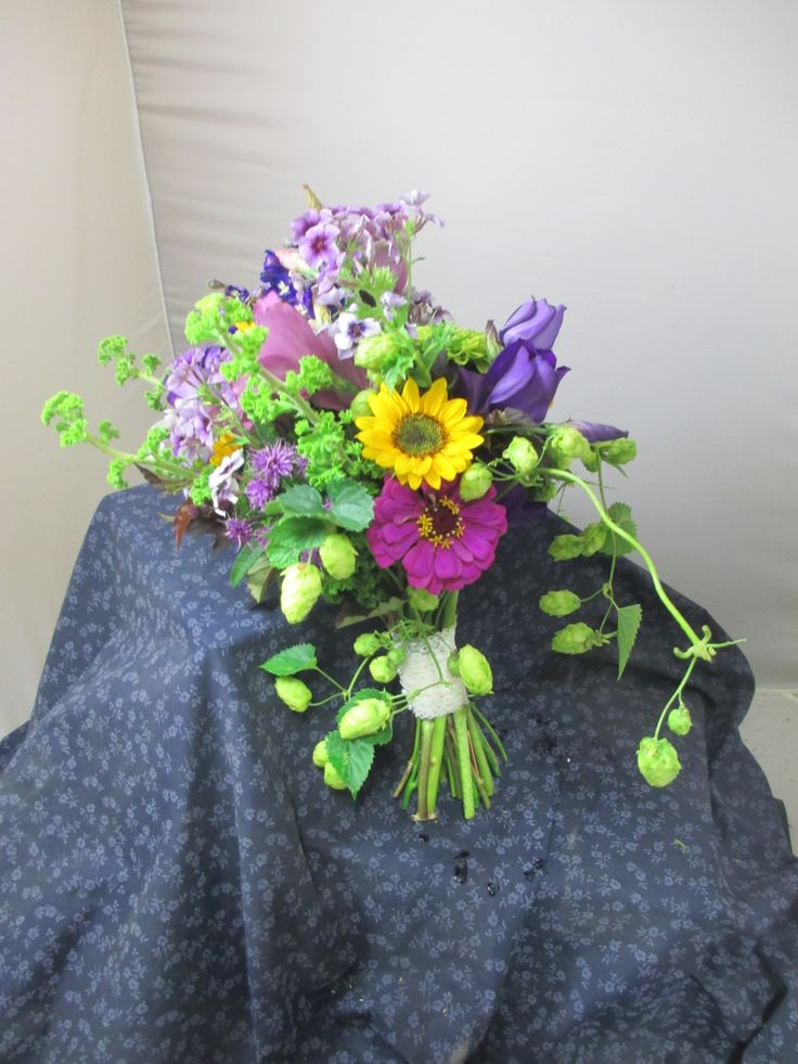 Plum and gold inspired bridal bouquet. All local flowers and greenery. Lisianthus, phlox, sunflowers, zinnias, scented geranium foliage, a cascade of hops. Tied off in lace. Early September. Backyard Maine Weddings.