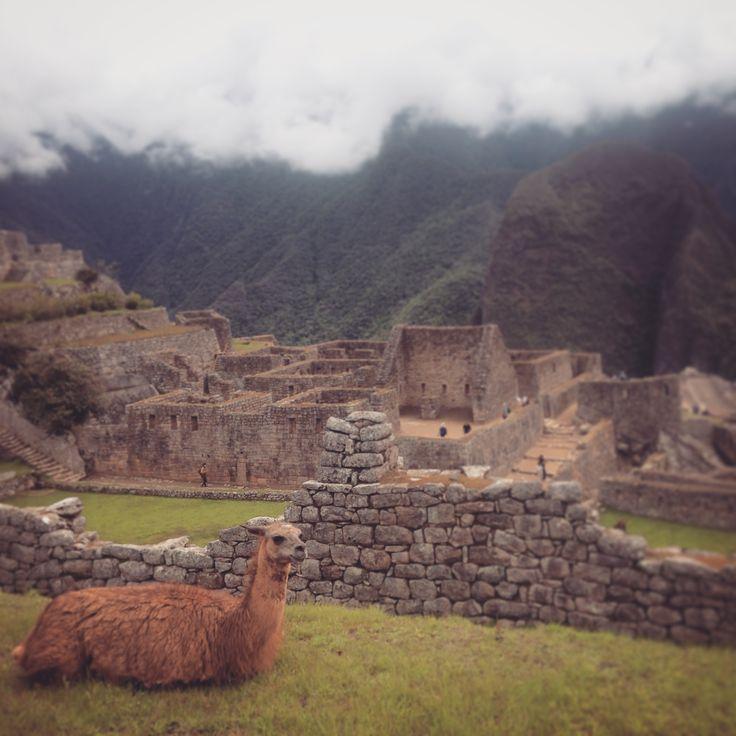 Dueñas de Machu Picchu || Foto Anamaría Nieto