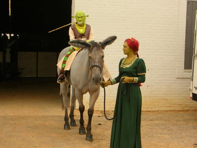 Horse Costume - Shrek @Emily Seeley we have to do this with Doc!!! haha