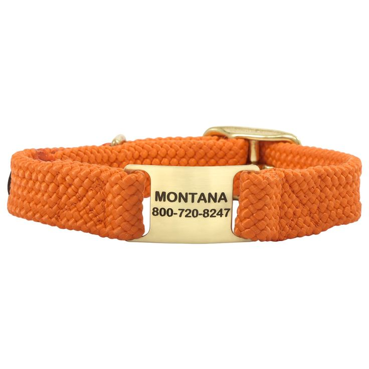 Built for durability and functionality, the Double Braid ScruffTag Personalized Dog Collars are perfect for any rough and tumble dog. Customize yours today!