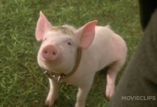 Babe (1995) That'll do pig...    Best movie ever!